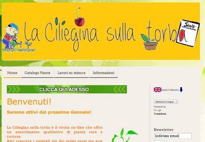 Lacilieginasullatorba.com